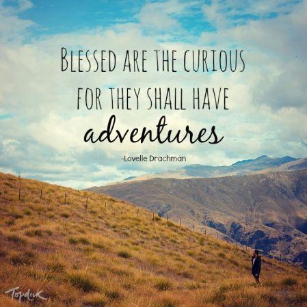 Enjoy, curious being.